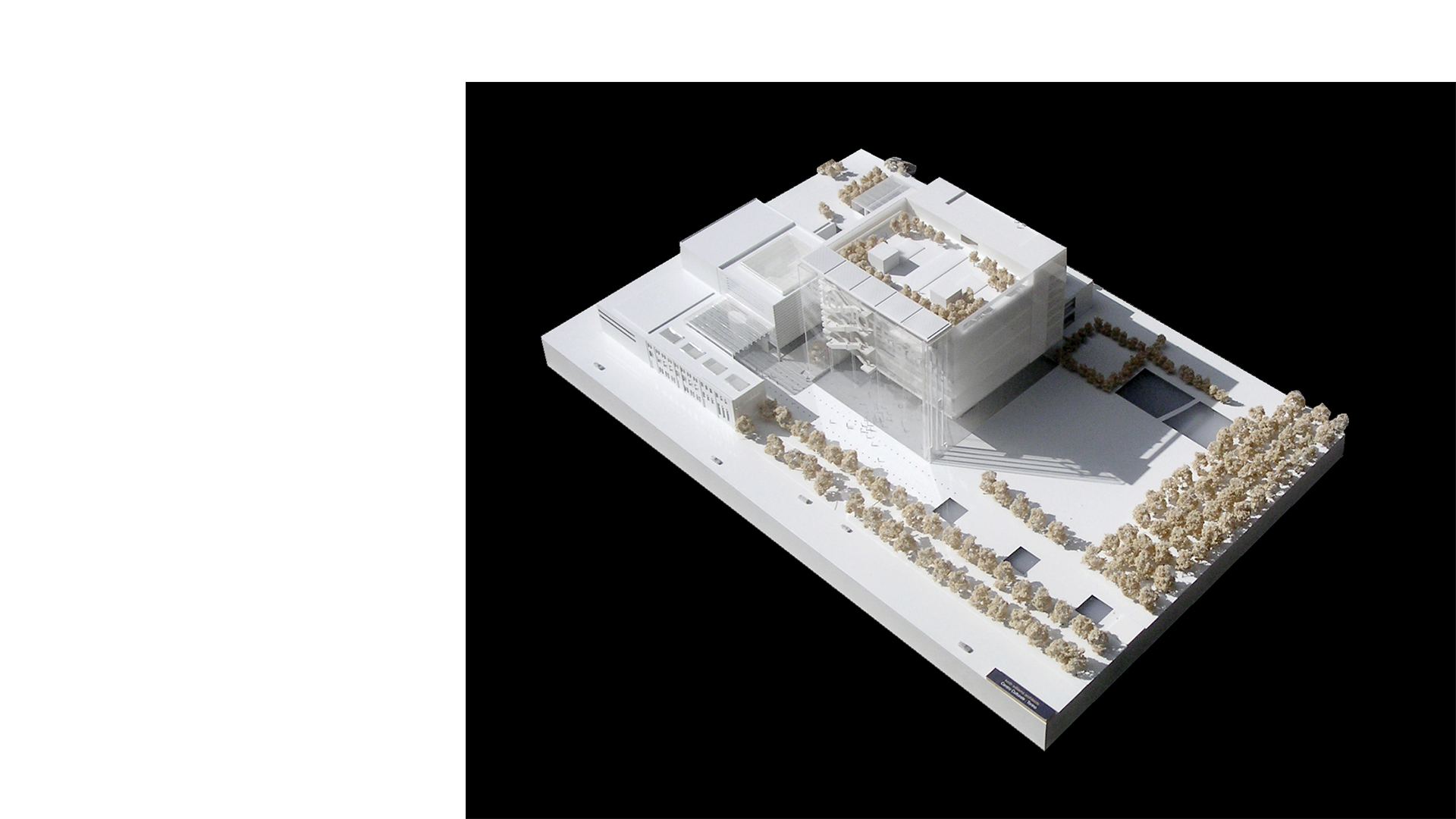 Overview of 3D model of the proposed Centro Culturale di Torino with the city library and new piazza