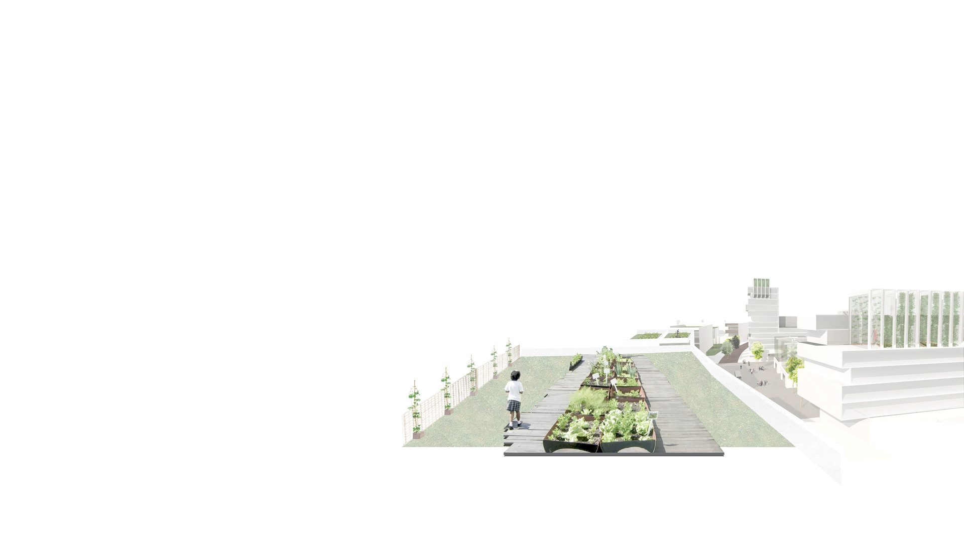Rendered image of one of the roofscape within one of the student quarters, part of Keith Williams' vision for a new masterplan for the University of Manitoba